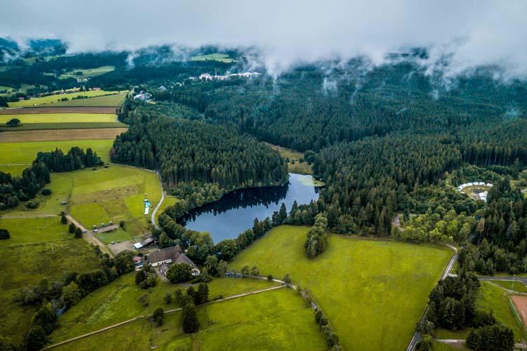 Wälderucp - Schwarzwald